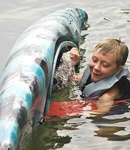 Vízi baleset