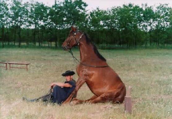 Leültünk pihenni a gazdival:)))